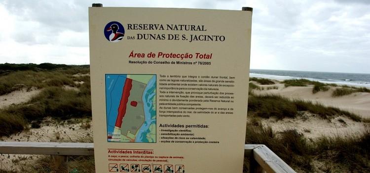 São Jacinto Dunes Natural Reserve, in Ria de Aveiro – Lagoon